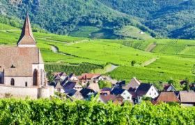 ALSAZIA – La strada dei vini e dei sapori – partenza 28/04/18 – 4 giorni in BUS GT